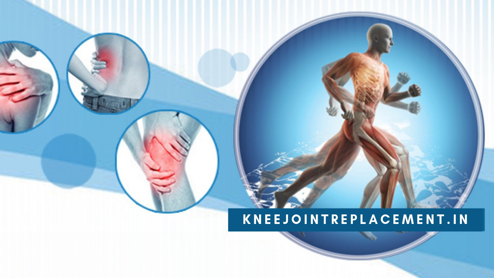 kneejointreplacement.in